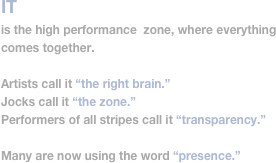 IT 